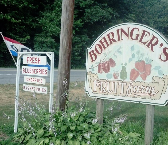 Bohringer's Fruit Farm